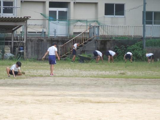 野球部が草むしりをしてくれました