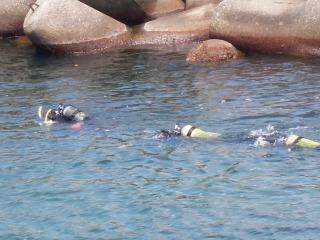 ダイビング3